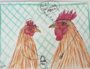 Sporty Chickens - 4