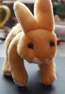 My stuffed bunny