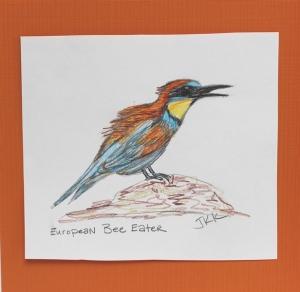 bee eater bird with orange mat
