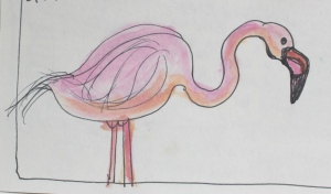 Flamingo from sketchbook