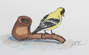 Goldfinch and Tobacco