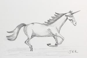 Unicorn Study