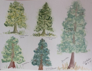 trees in watercolor and gouache