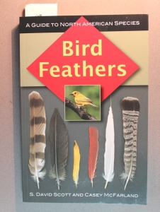bird feather book