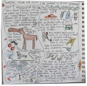 my journal page for sunday, June 28