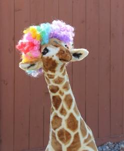 Jammy the Giraffe - 2