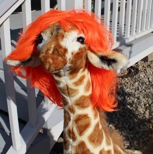 Jammy with orange hair