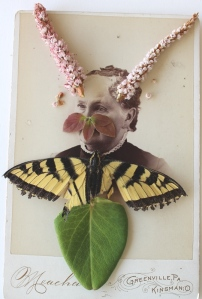 She dreamed she was a butterfly