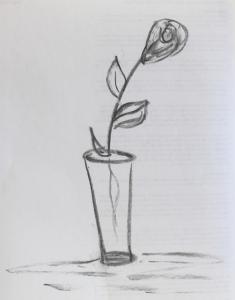 charcoal - a rose