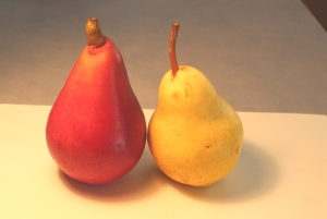 red and yellow pear photo