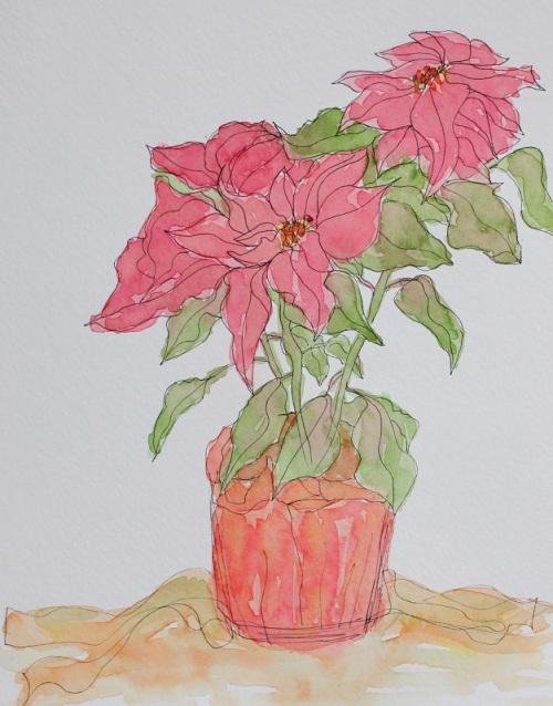 Poinsettia - 2