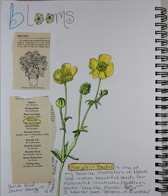 B is for Blooms